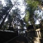 日光-200段の階段@頂上付近