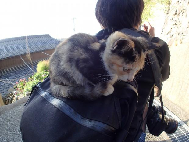 猫onリュック